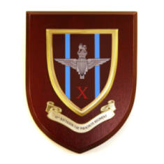 Plaque - 10th Battalion Para