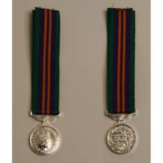 Accumulated Campaign Service 2011 Miniature Medal