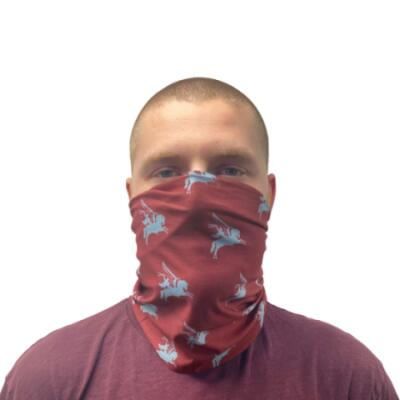 Stretchable Multipurpose Face Covering / Bandana - Pegasus