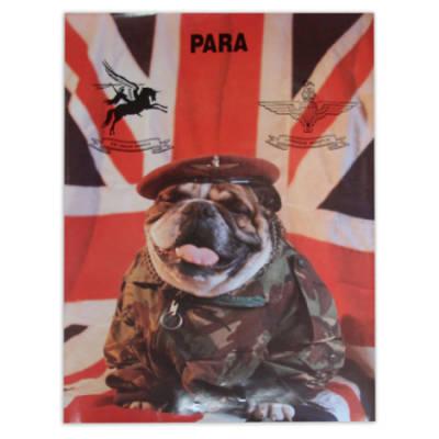 Para Bulldog Poster