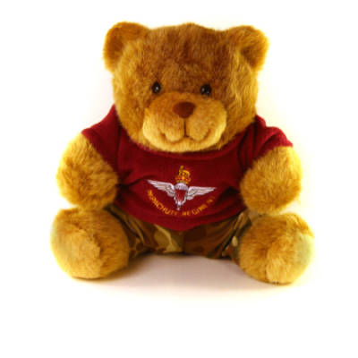 Para Teddy Bear with Para T-Shirt (10in)