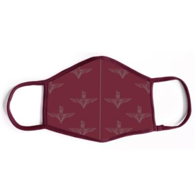 Para Maroon Face Covering (Mask) with Washable FFP2 Filter
