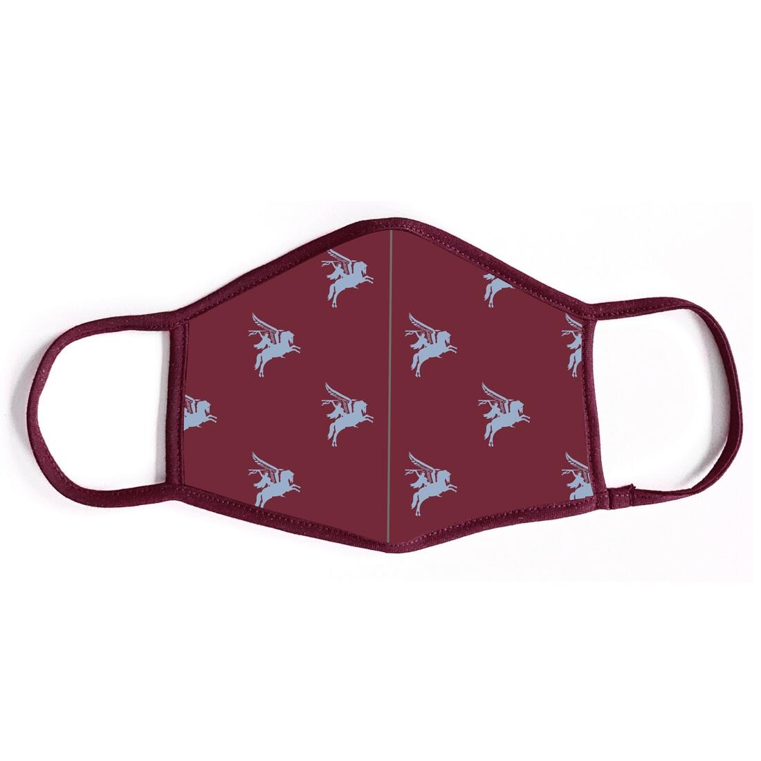 Pegasus Maroon Face Covering (Mask) with Washable FFP2 Filter